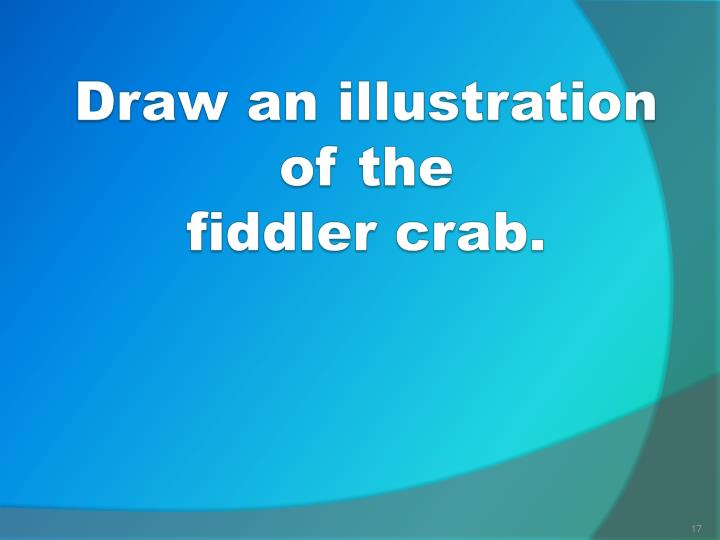 Draw an illustration of the