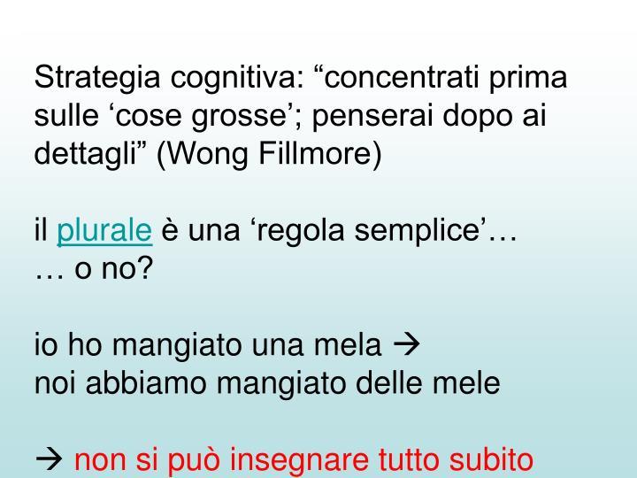 """Strategia cognitiva: """"concentrati prima sulle 'cose grosse'; penserai dopo ai dettagli"""" (Wong Fillmore)"""