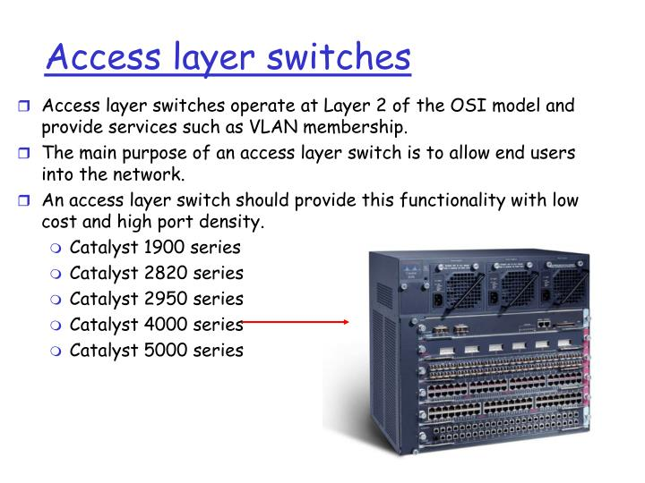 Access layer switches