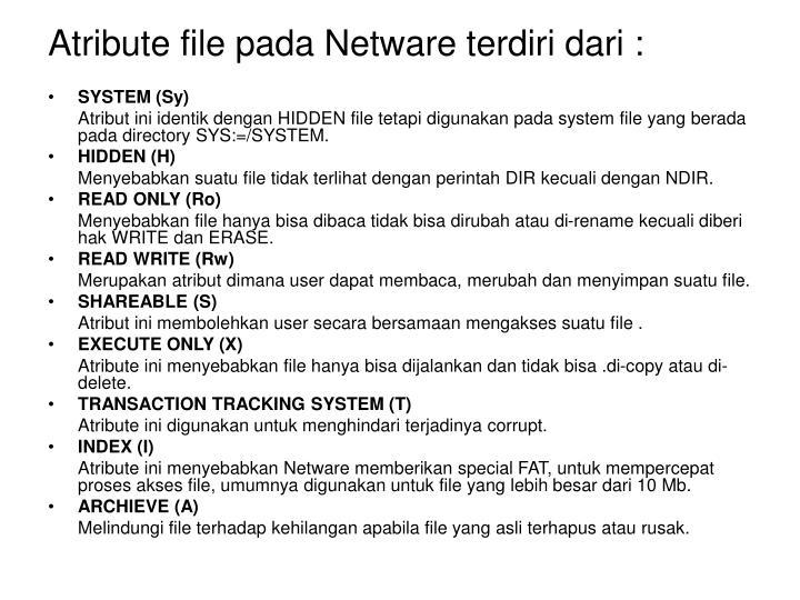 Atribute file pada Netware terdiri dari :