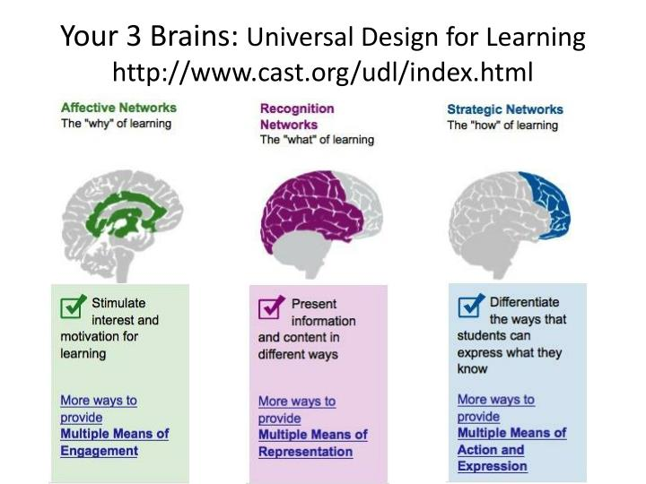 Your 3 Brains: