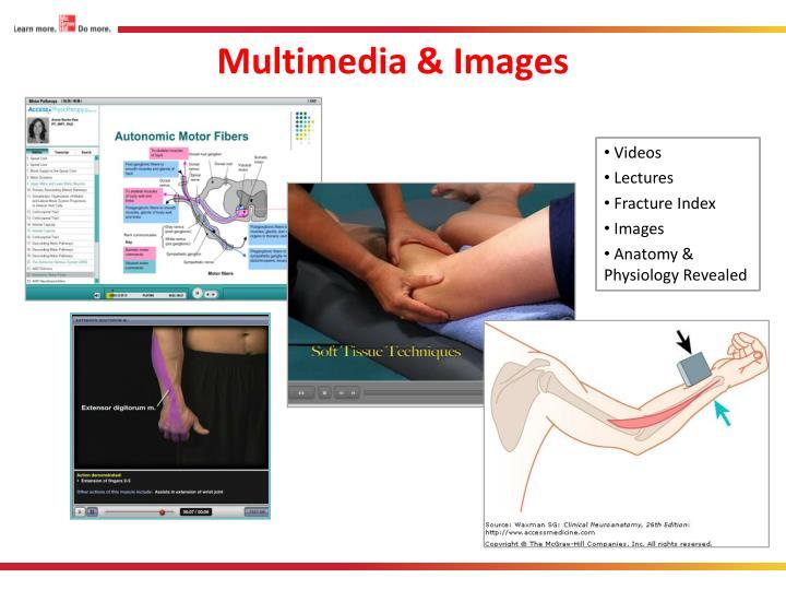Multimedia & Images