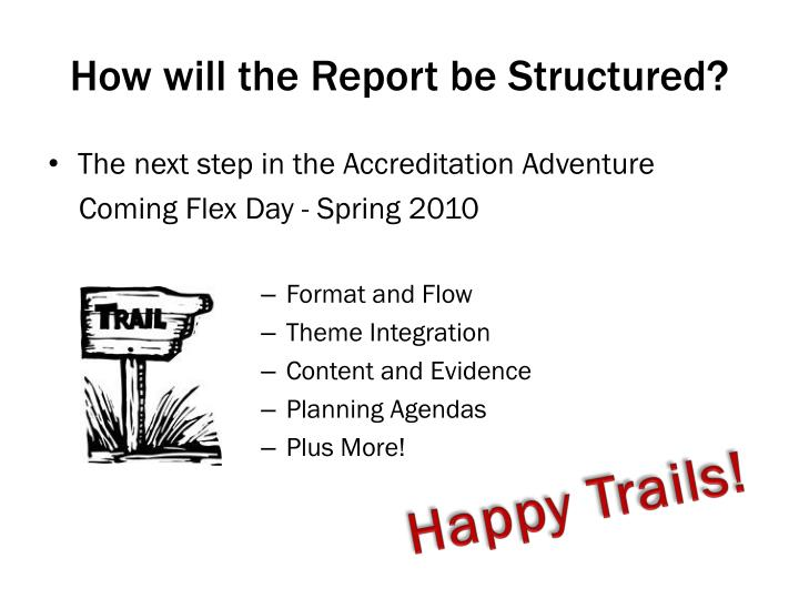 How will the Report be Structured?