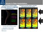 issues in data assimilation1