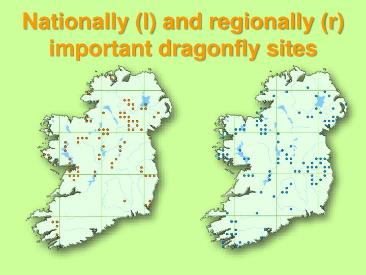 Nationally (l) and regionally (r) important dragonfly sites
