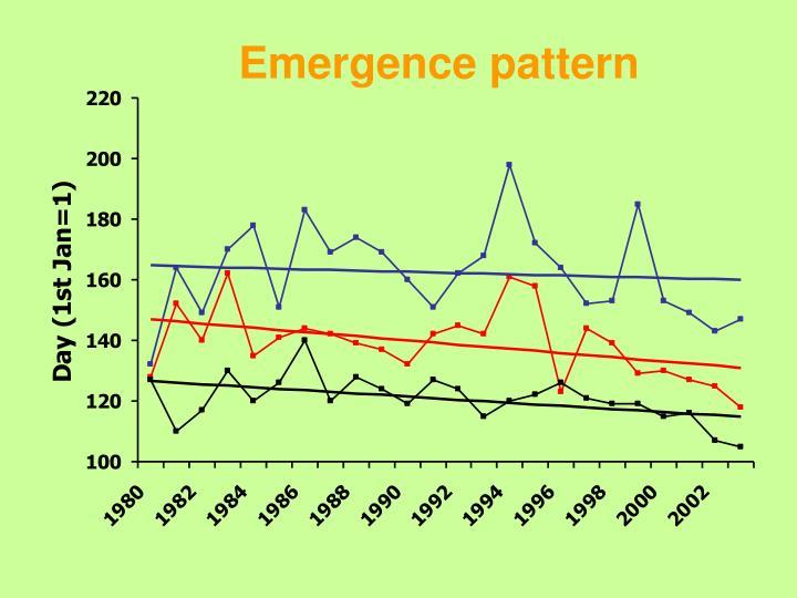 Emergence pattern