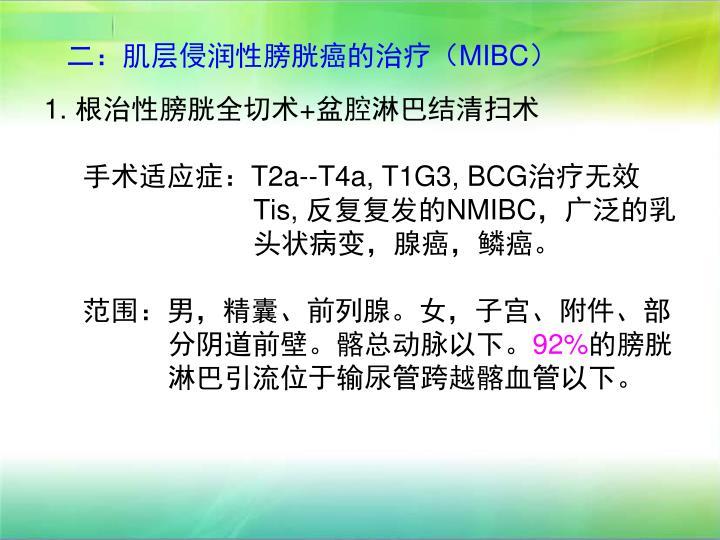 二:肌层侵润性膀胱癌的治疗(MIBC)