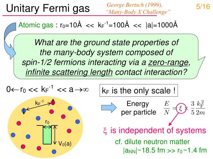 Unitary Fermi gas