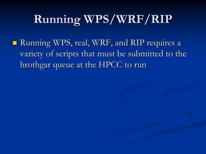 Running WPS/WRF/RIP