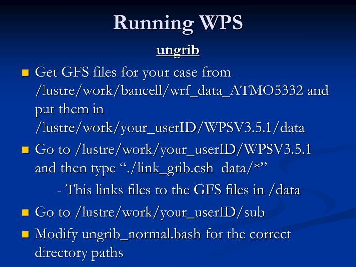 Running WPS