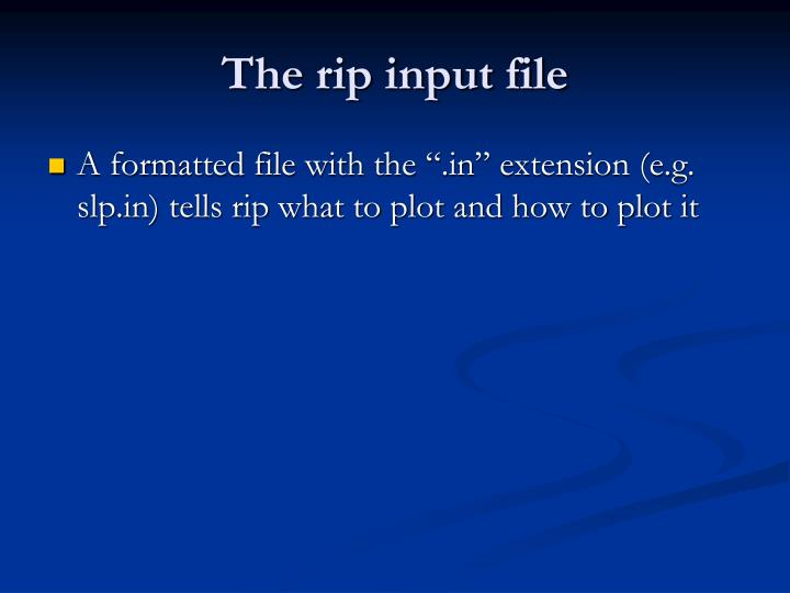 The rip input file