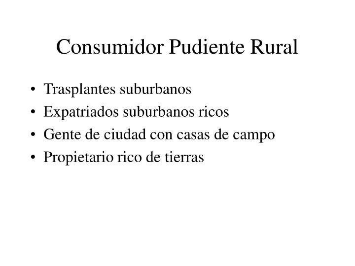 Consumidor Pudiente Rural