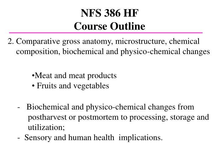 NFS 386 HF