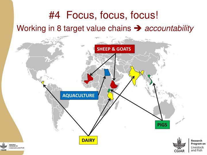 #4  Focus, focus, focus!