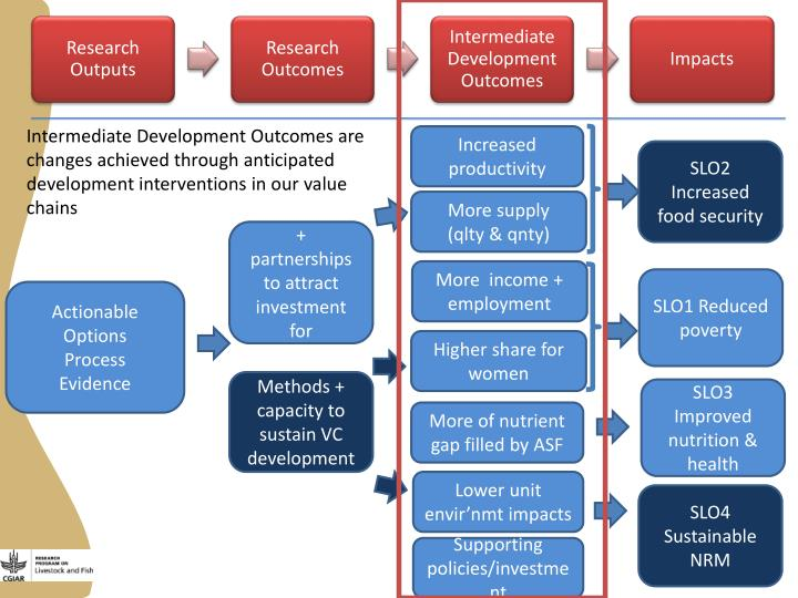 Intermediate Development Outcomes are changes achieved through anticipated development interventions in our value chains
