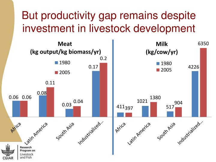 But productivity gap remains despite