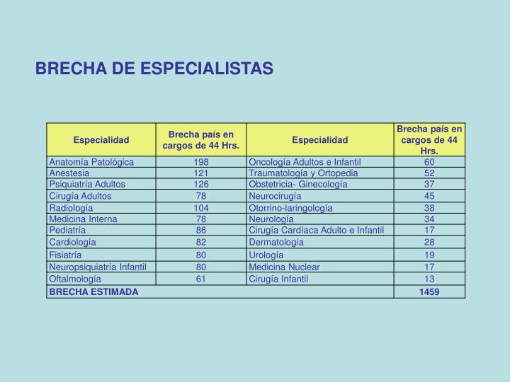 BRECHA DE ESPECIALISTAS