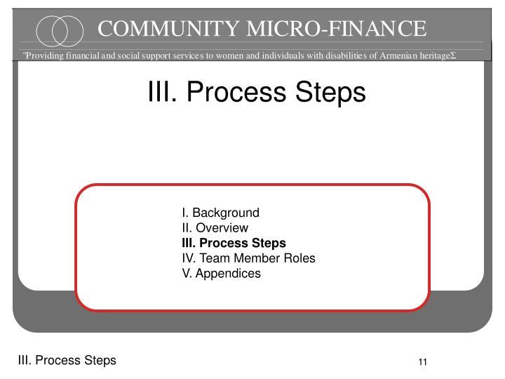 III. Process Steps