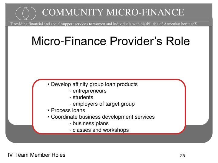 Micro-Finance Provider's Role