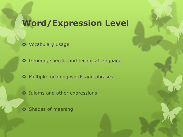 Word/Expression Level