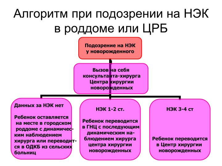 Алгоритм при подозрении на НЭК в роддоме или ЦРБ