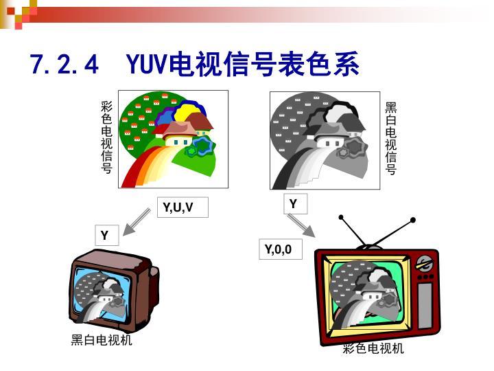 彩色电视信号