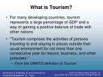 what is tourism1