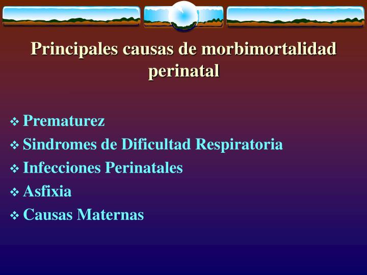 Principales causas de morbimortalidad perinatal