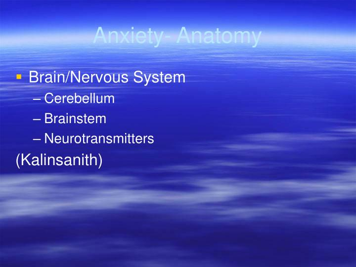Anxiety- Anatomy