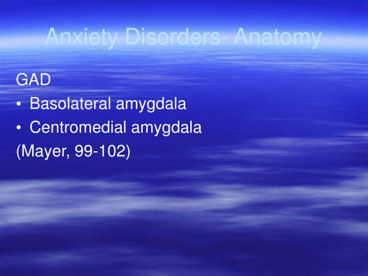 Anxiety Disorders- Anatomy