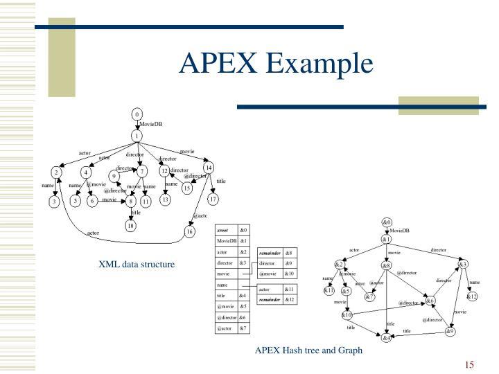 APEX Example