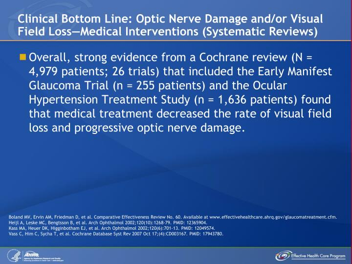 Clinical Bottom Line: Optic Nerve Damage and/or Visual Field Loss—Medical Interventions (Systematic Reviews)
