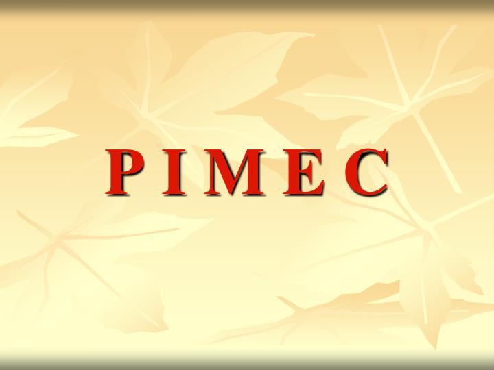 P I M E C