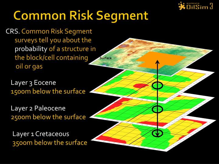Common Risk Segment