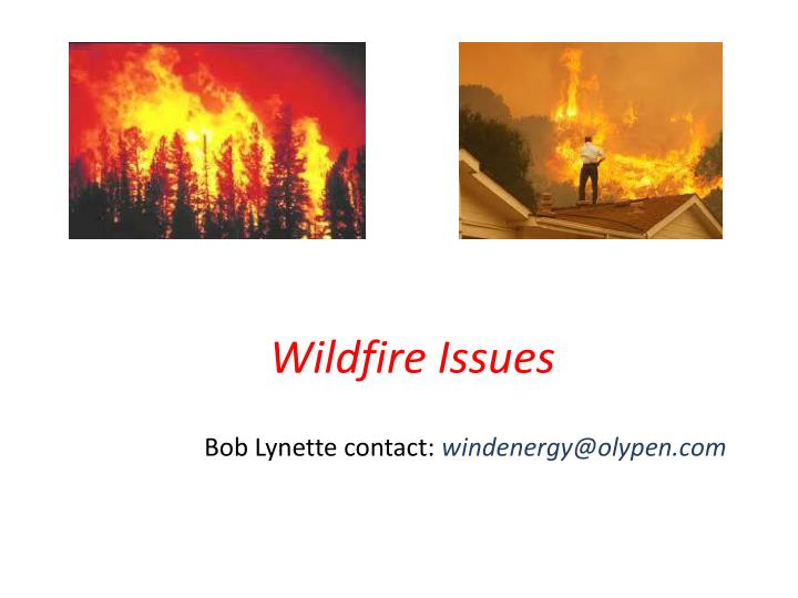 Wildfire issues