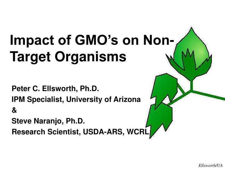 Impact of GMO's on Non-Target Organisms