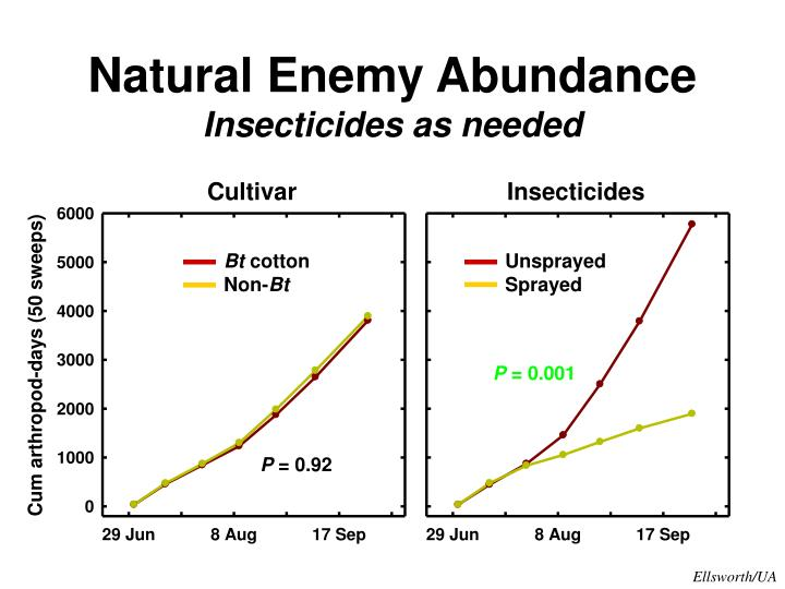 Natural Enemy Abundance