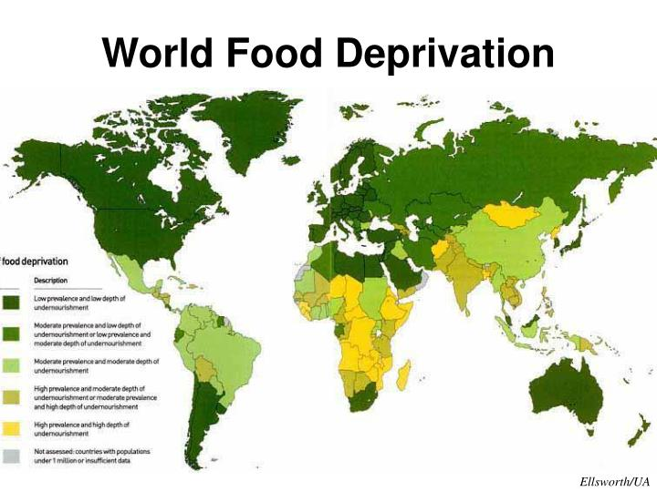 World Food Deprivation