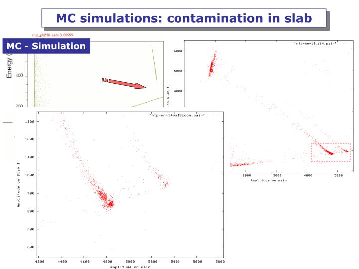 MC simulations: contamination in slab