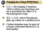 framing the cotton wto issue