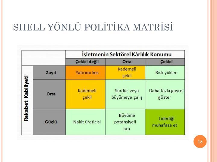 SHELL YÖNLÜ POLİTİKA MATRİSİ