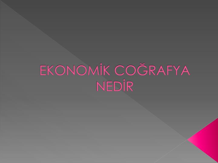Ekonom k co rafya ned r