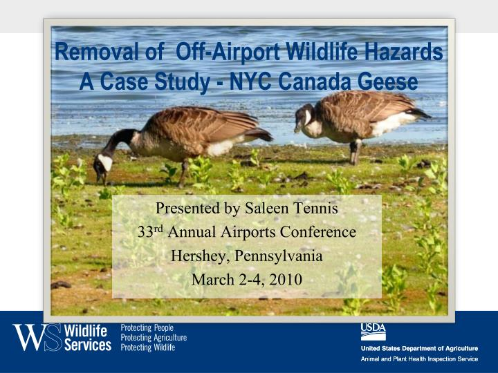 Removal of off airport wildlife hazards a case study nyc canada geese