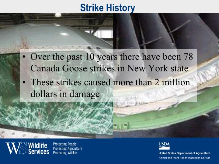 Strike History