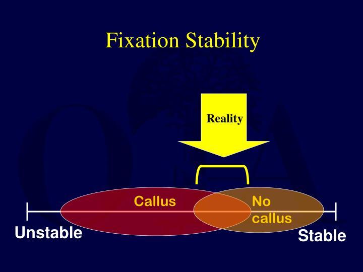 Fixation Stability