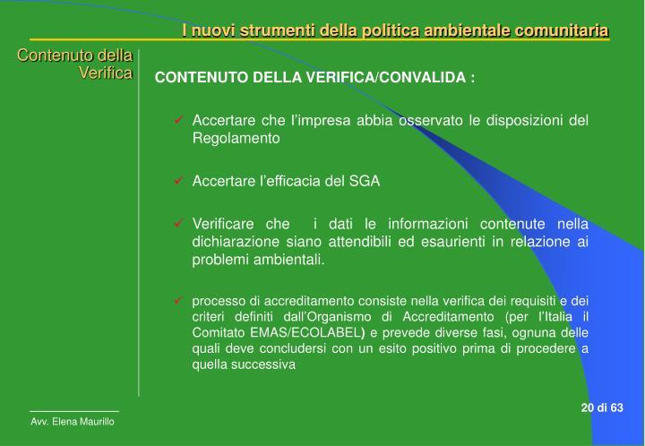 CONTENUTO DELLA VERIFICA/CONVALIDA :