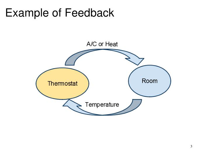Example of feedback