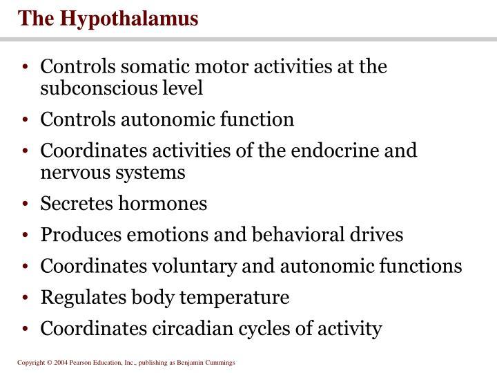 The Hypothalamus
