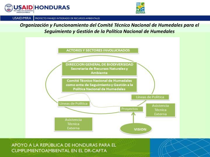 Organización y Funcionamiento del Comité Técnico Nacional de Humedales para el Seguimiento y Gestión de la Política Nacional de Humedales