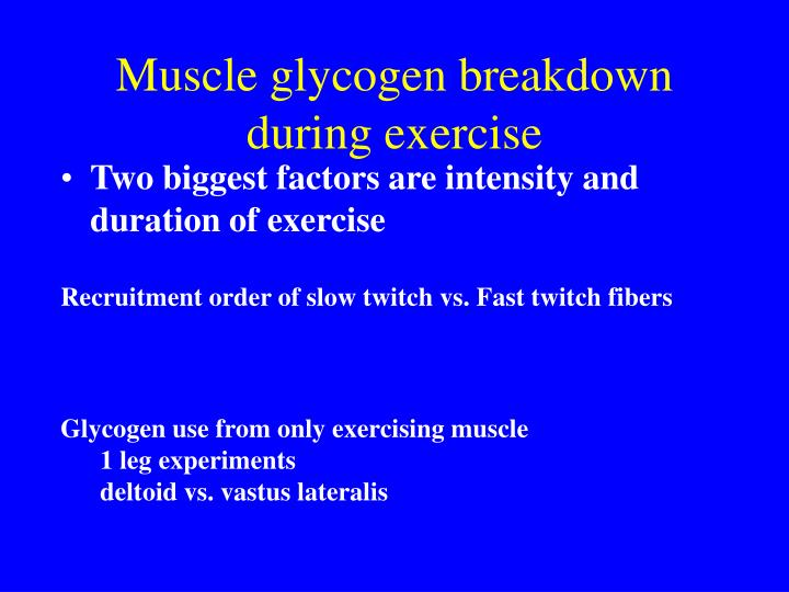 Muscle glycogen breakdown during exercise
